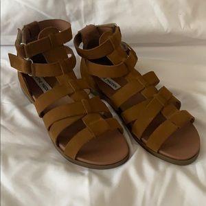 New Steve Madden Gali Gladiator Sandal size 7.5